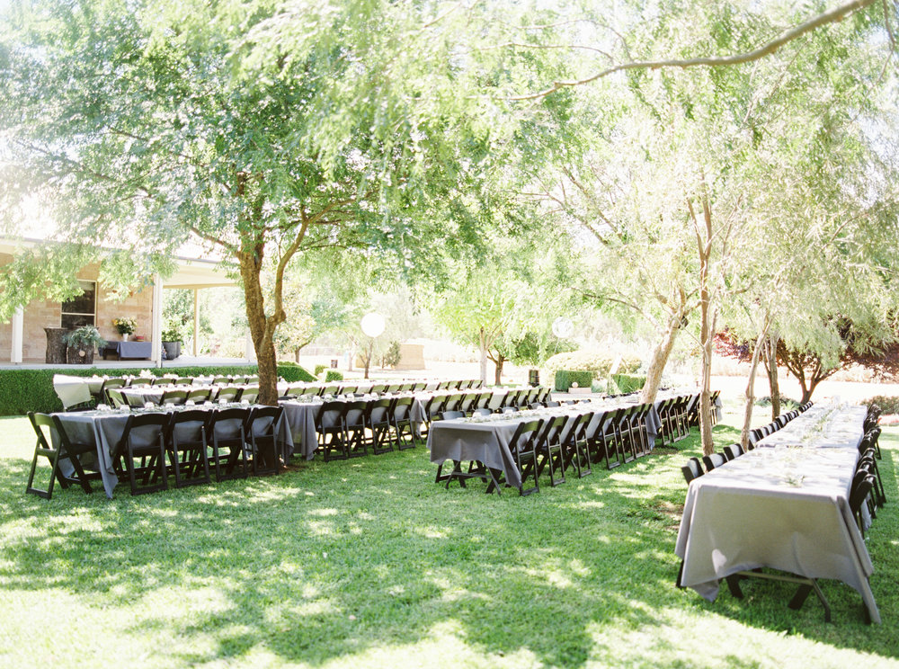00070- Olive Tree Mediterranean Wedding in Mudgee NSW Australia Fine Art Film Wedding Lifestyle Photographer Sheri McMahon_.jpg