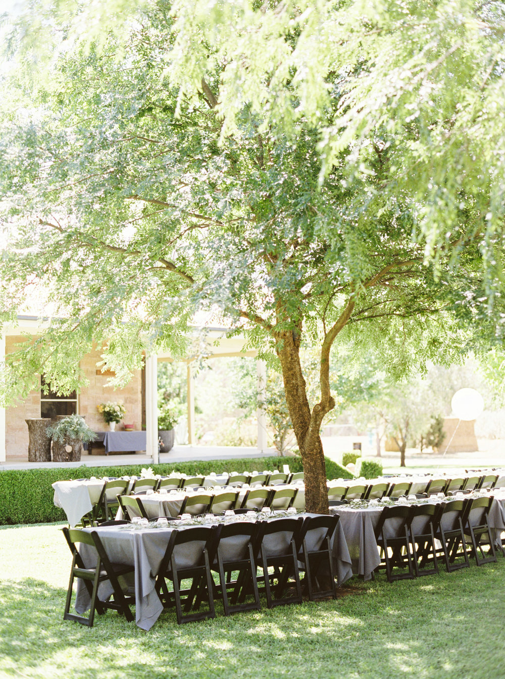 00072- Olive Tree Mediterranean Wedding in Mudgee NSW Australia Fine Art Film Wedding Lifestyle Photographer Sheri McMahon_.jpg
