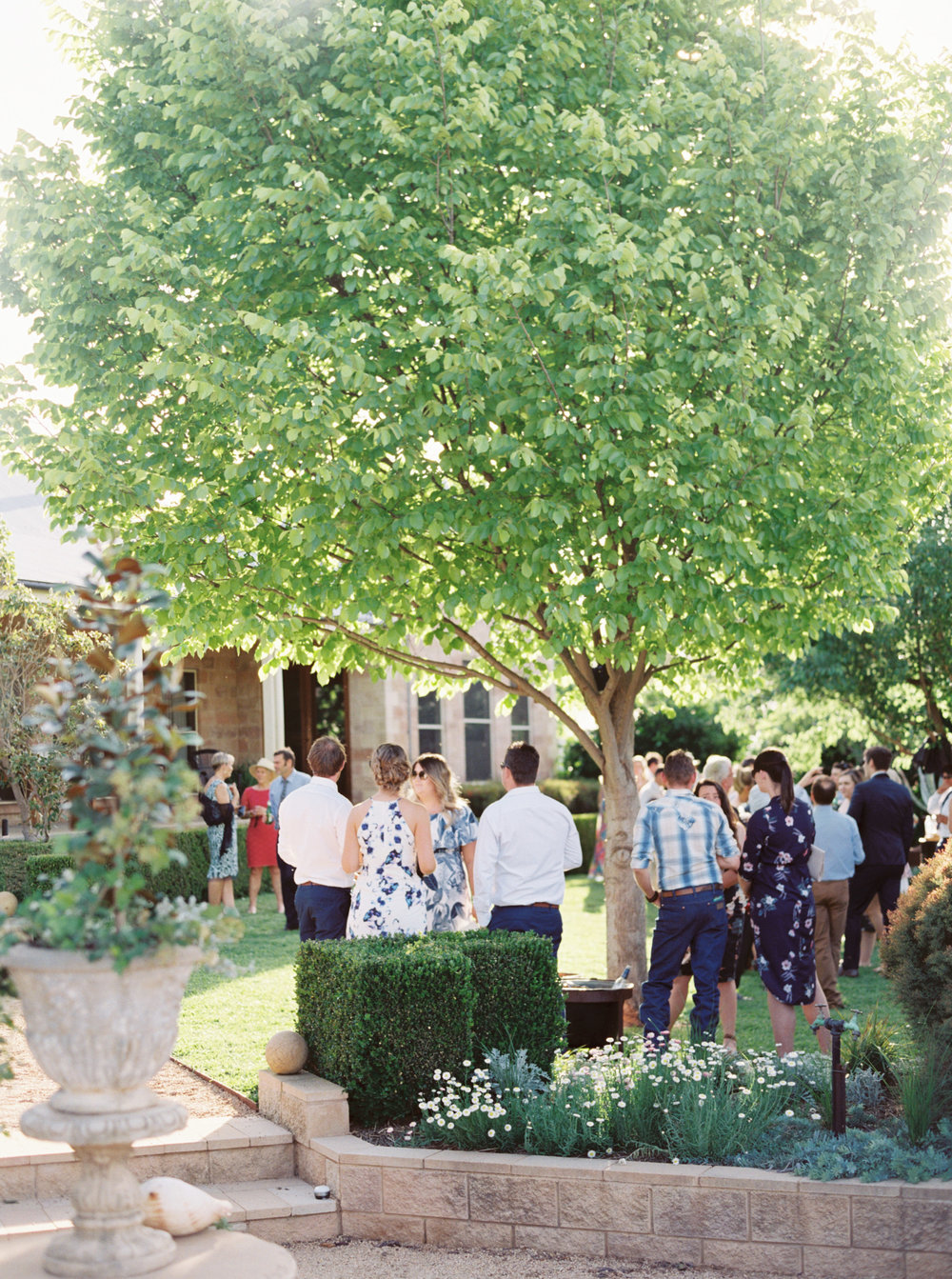 00076- Olive Tree Mediterranean Wedding in Mudgee NSW Australia Fine Art Film Wedding Lifestyle Photographer Sheri McMahon_.jpg