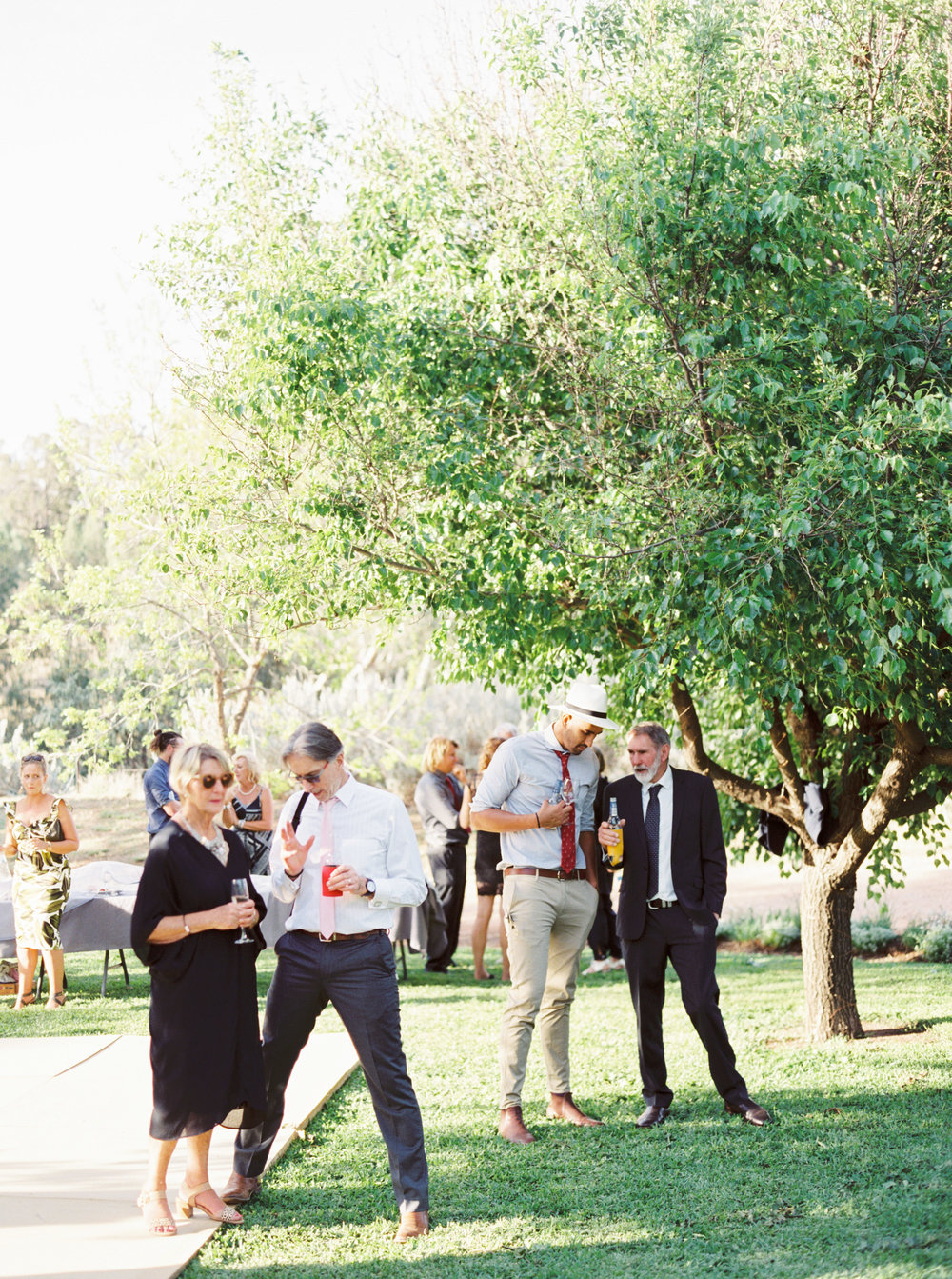 00077- Olive Tree Mediterranean Wedding in Mudgee NSW Australia Fine Art Film Wedding Lifestyle Photographer Sheri McMahon_.jpg