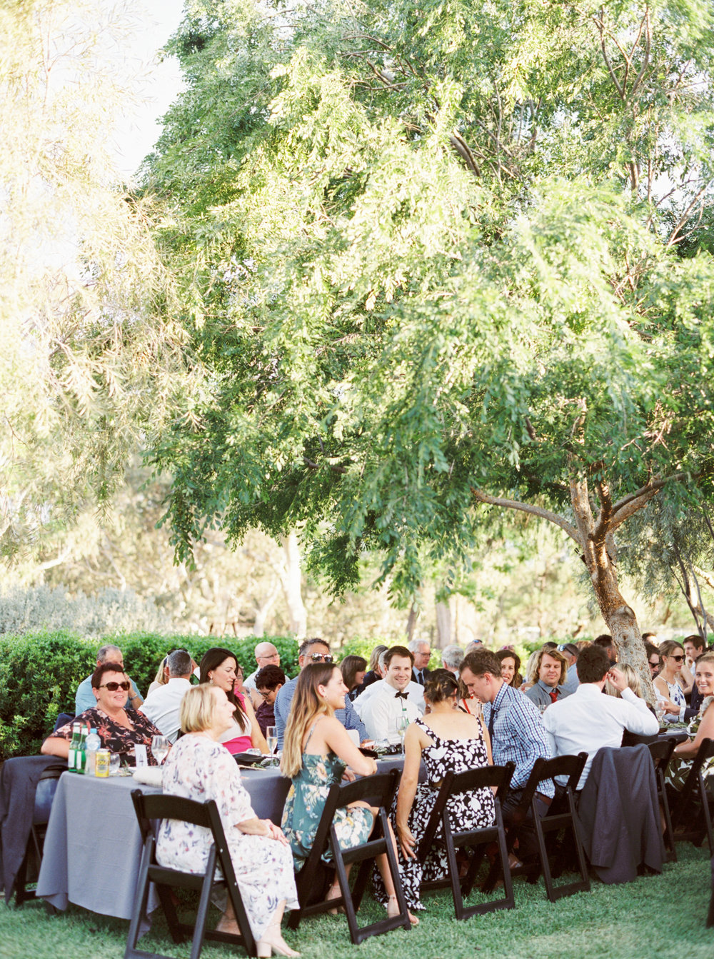 00084- Olive Tree Mediterranean Wedding in Mudgee NSW Australia Fine Art Film Wedding Lifestyle Photographer Sheri McMahon_.jpg