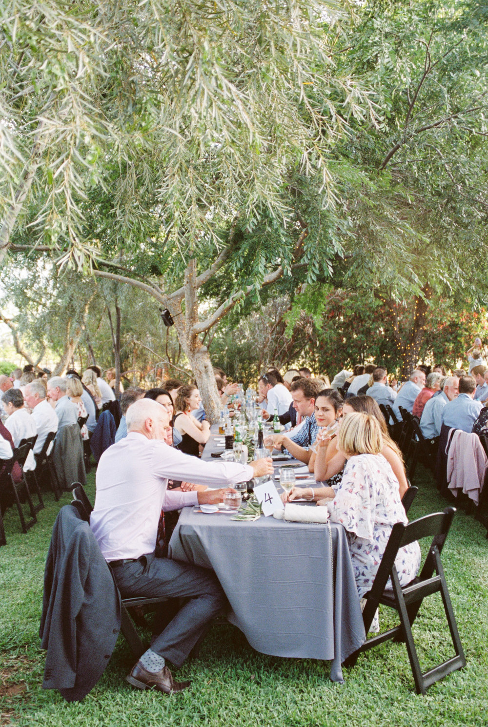 00088- Olive Tree Mediterranean Wedding in Mudgee NSW Australia Fine Art Film Wedding Lifestyle Photographer Sheri McMahon_.jpg