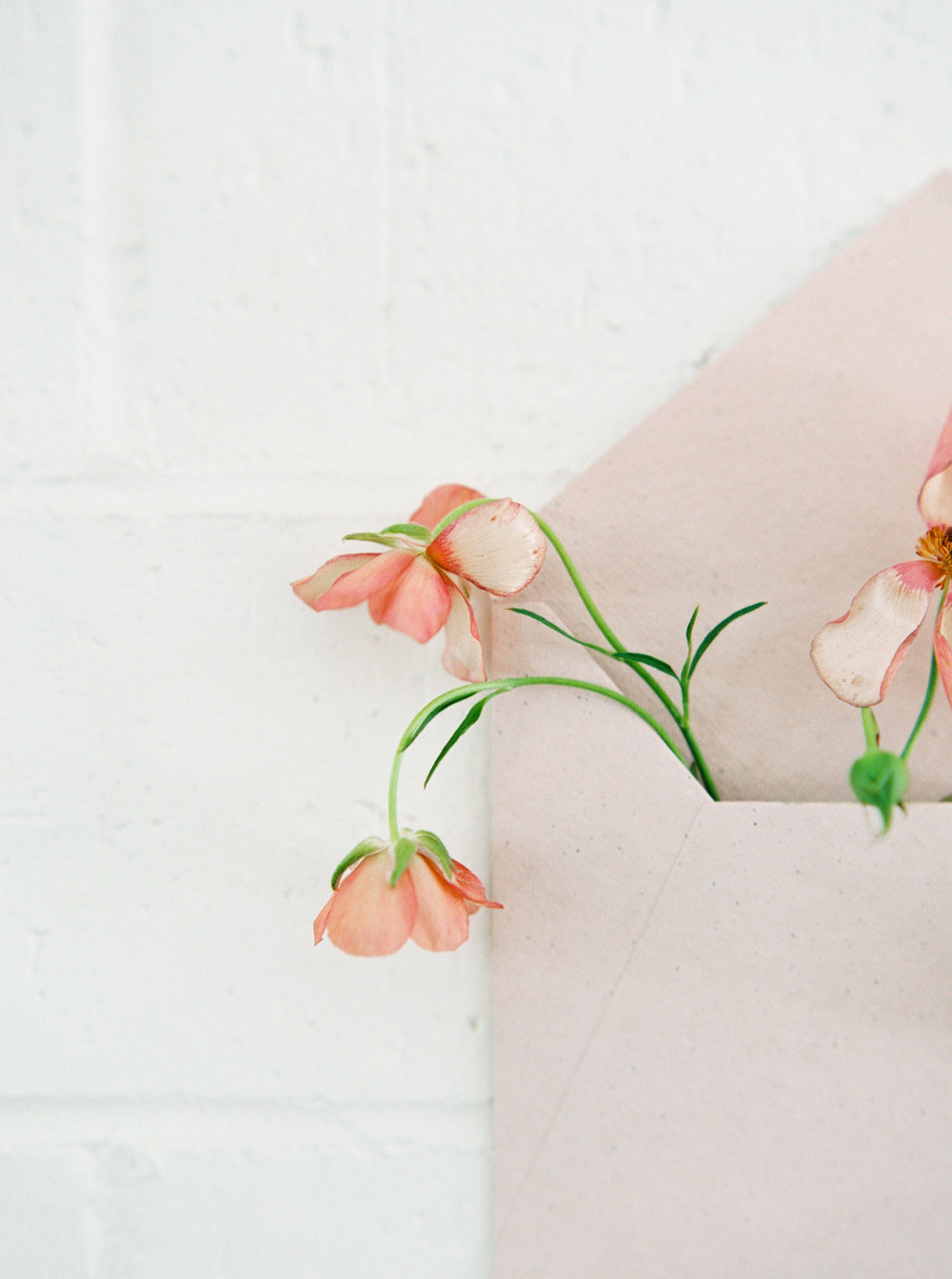 00043- Sydney Wedding Florist Flower Arrangement Mudgee Orange NSW Fine Art Film Lifestyle Photographer Sheri McMahon_.jpg
