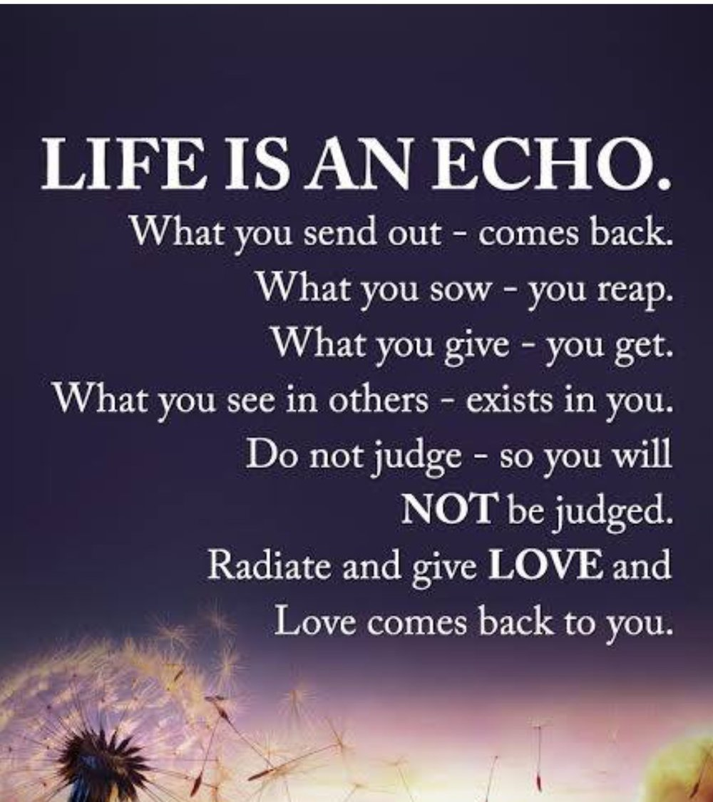 Life Is An Echo Quote Dropping Jewels  Oh You Thought.