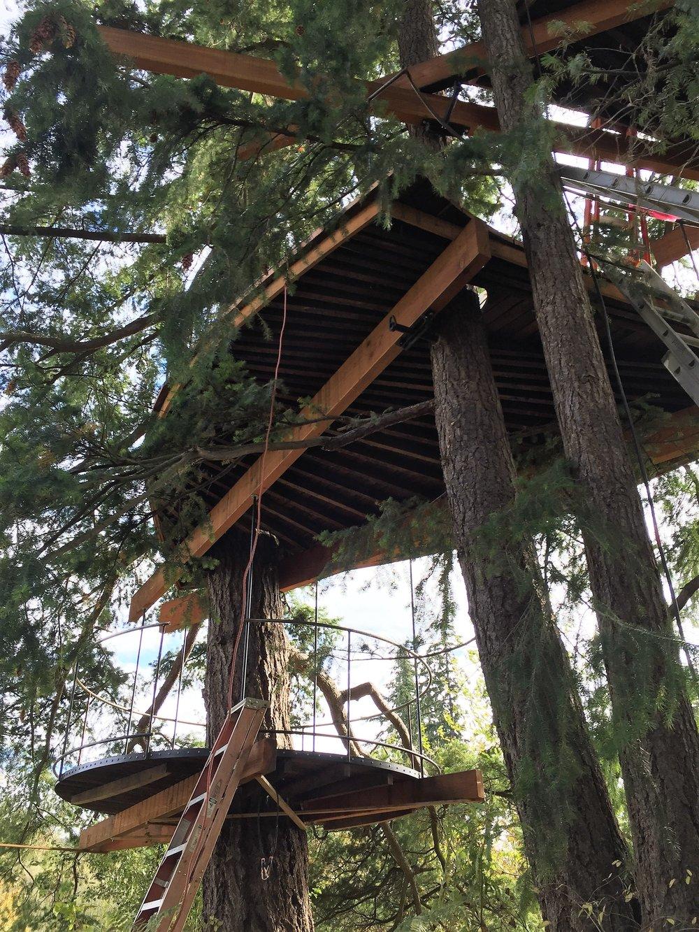 three-story sculptural tree fort under construction.JPG