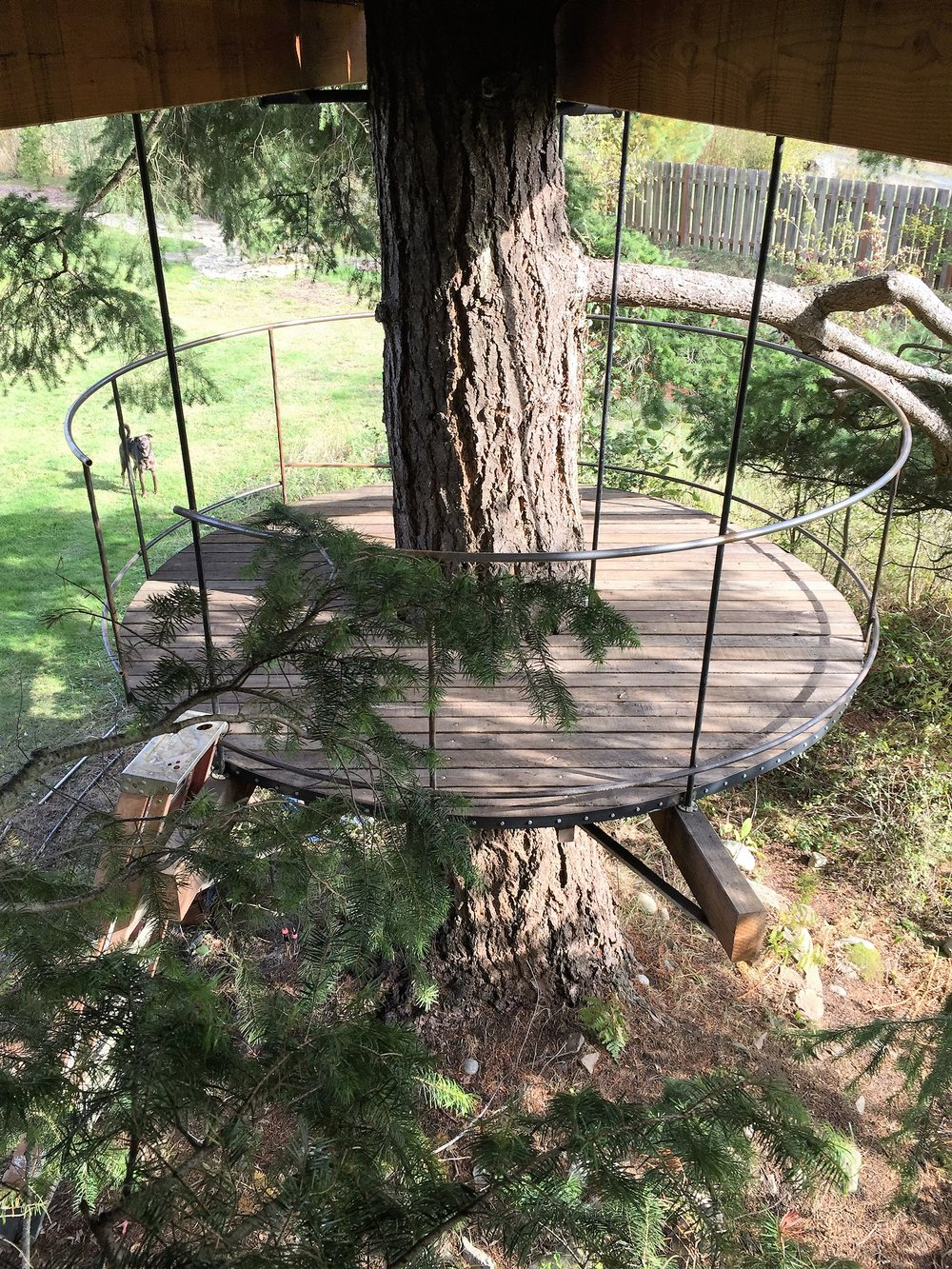 tree fort lower circular deck railing and platform around tree trunk.JPG