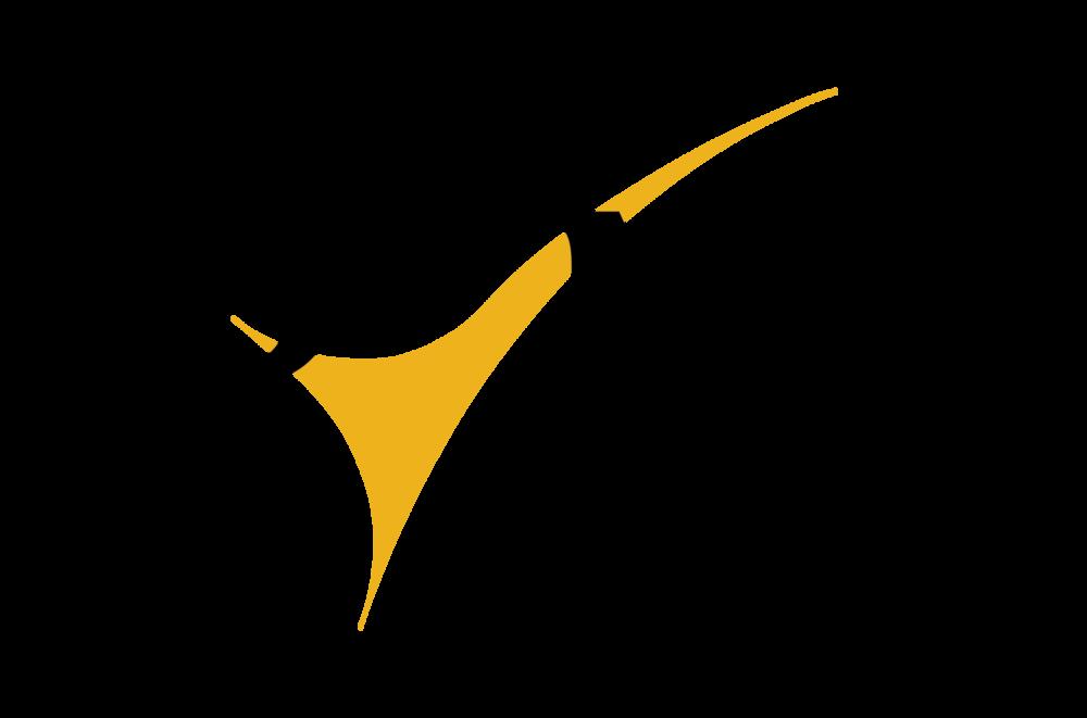 PerformanceValueManagement_PVM_Logo_201510.png