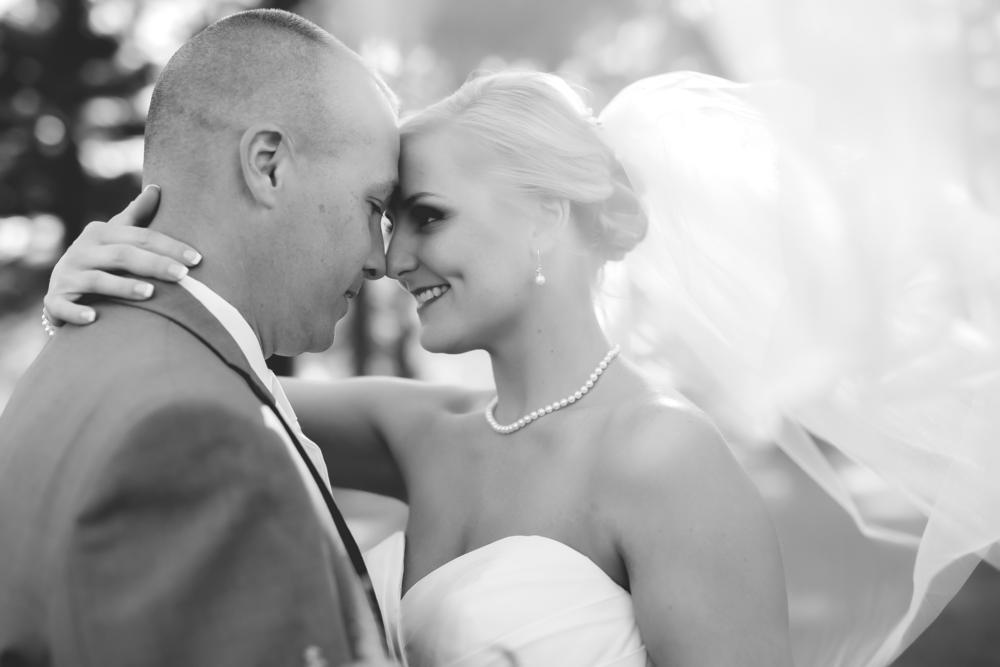 Wedding-489-489.png