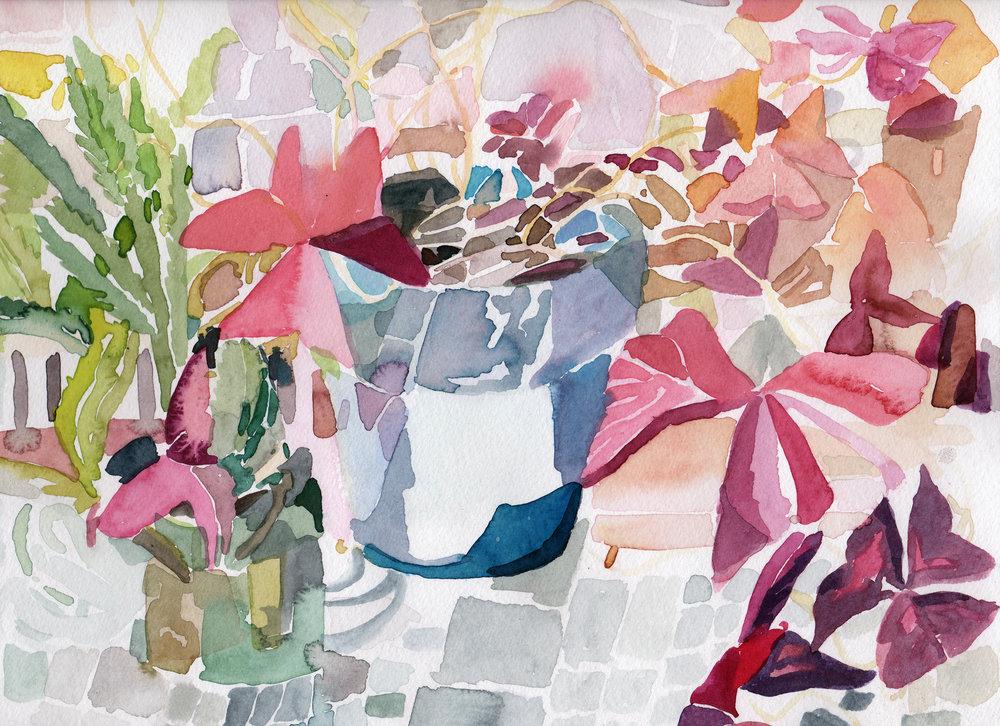 """2016. Plant Window. 9 x 12"""""""