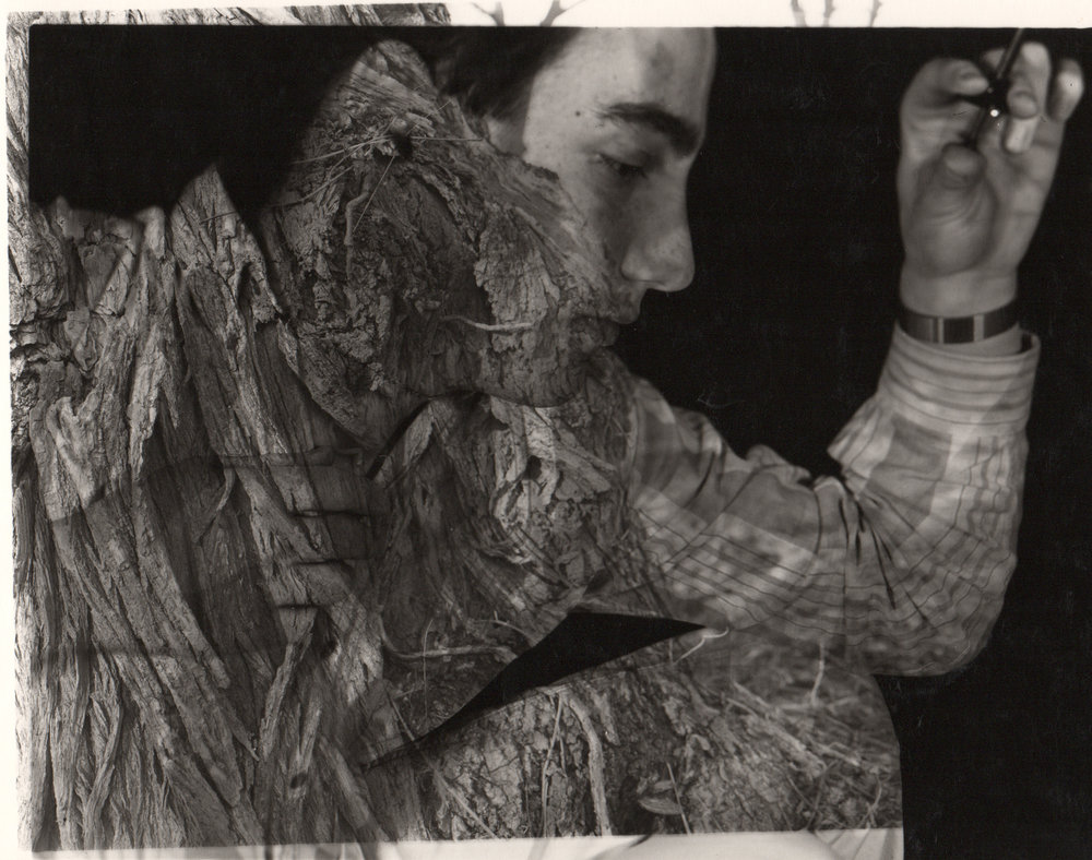 1989.bark.jpg