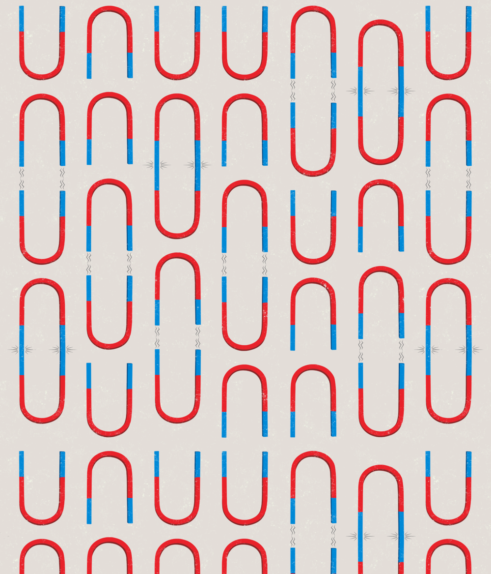 Magnet Pattern. Purchase pillow at  Scout & Whistle.