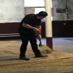 malting floor at balvenie distillery (jsw 2017)