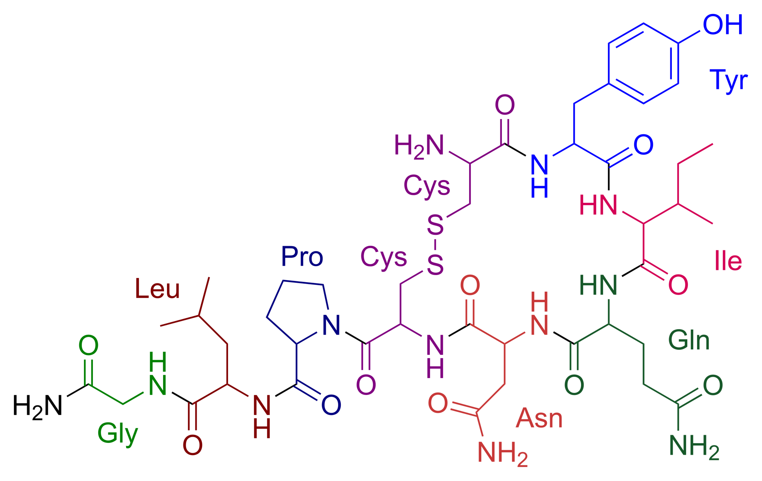 Chemical structure of oxytocin.