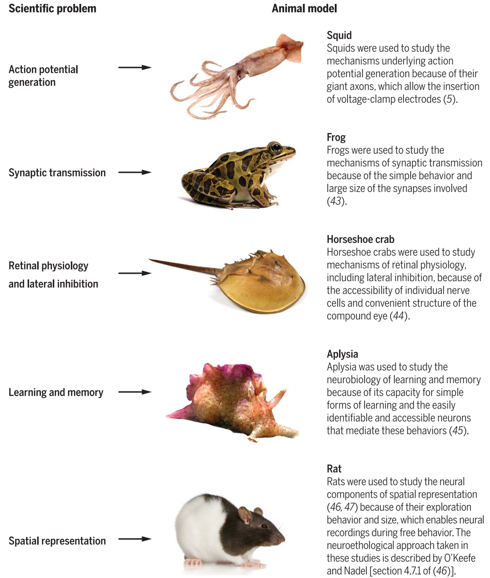 - Examples of important discoveries made by leveraging unique traits of non-traditional model organisms, adapted from reference 7.