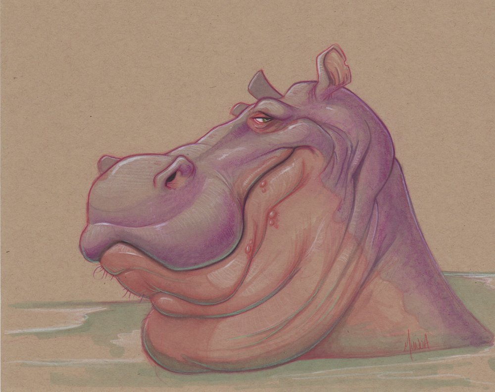 hippo-color-sketch.jpeg