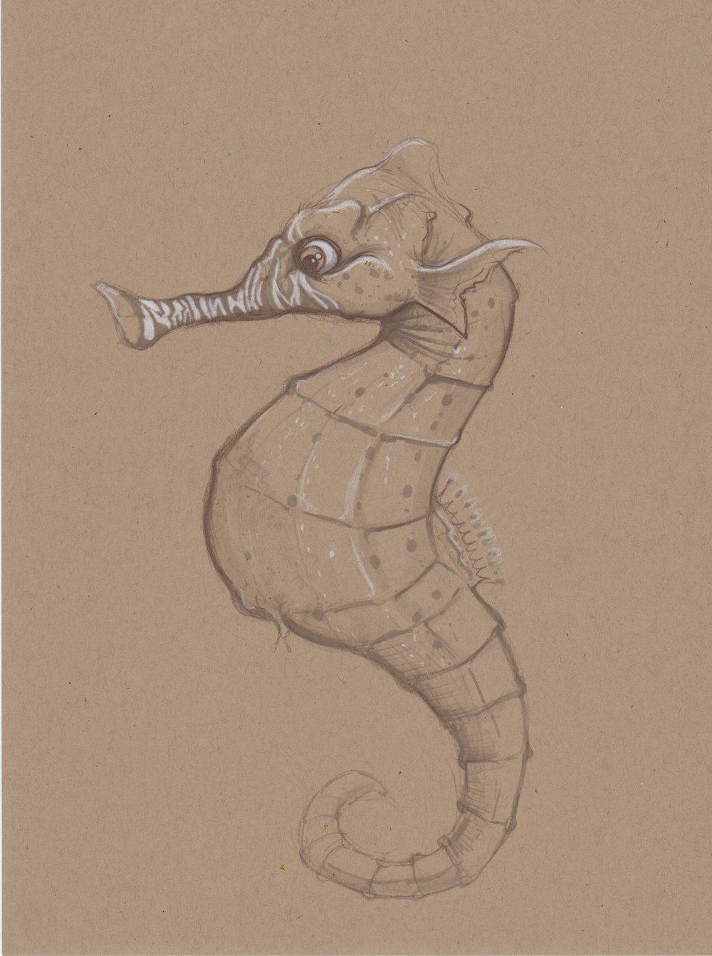 seahorse_sketch.jpeg
