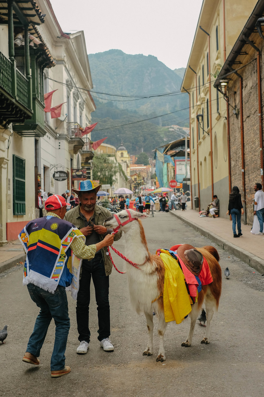 2 - Bogota City Scenes 07.jpg