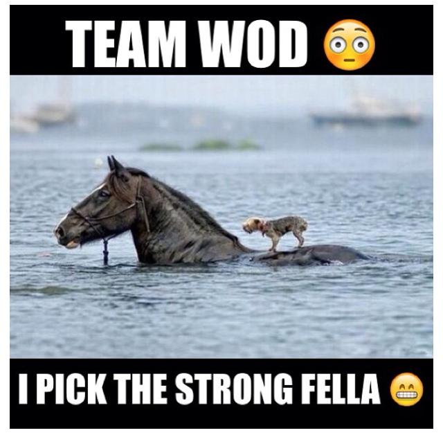 Team wod memes
