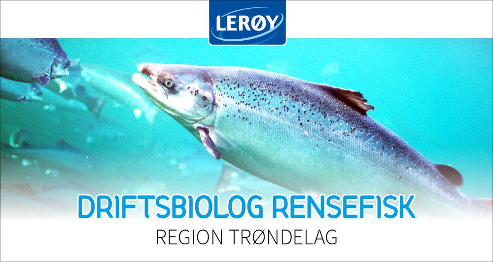 leroy_heading.jpg