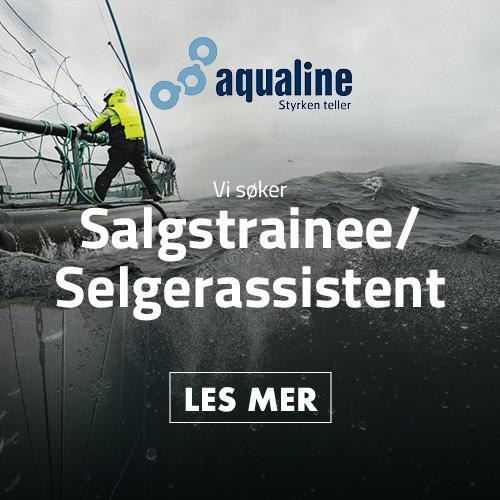 HFjobb_boks_Aqualine_500x500_trainee.jpg