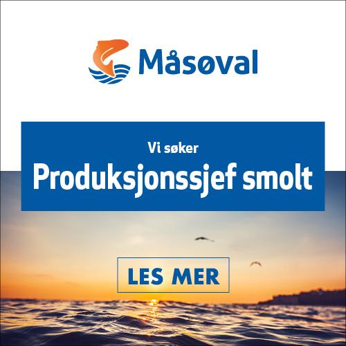 HFjobb_boks_Masoval_PSS_500x500.jpg