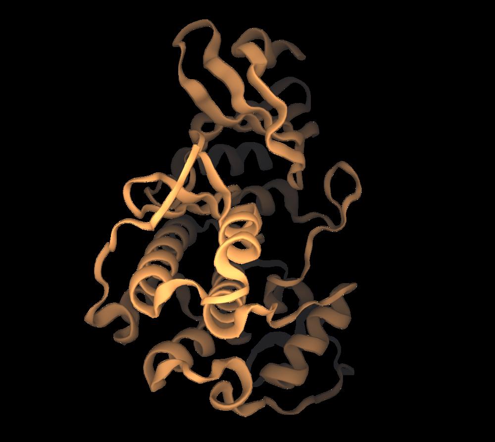 target validation kinase.png