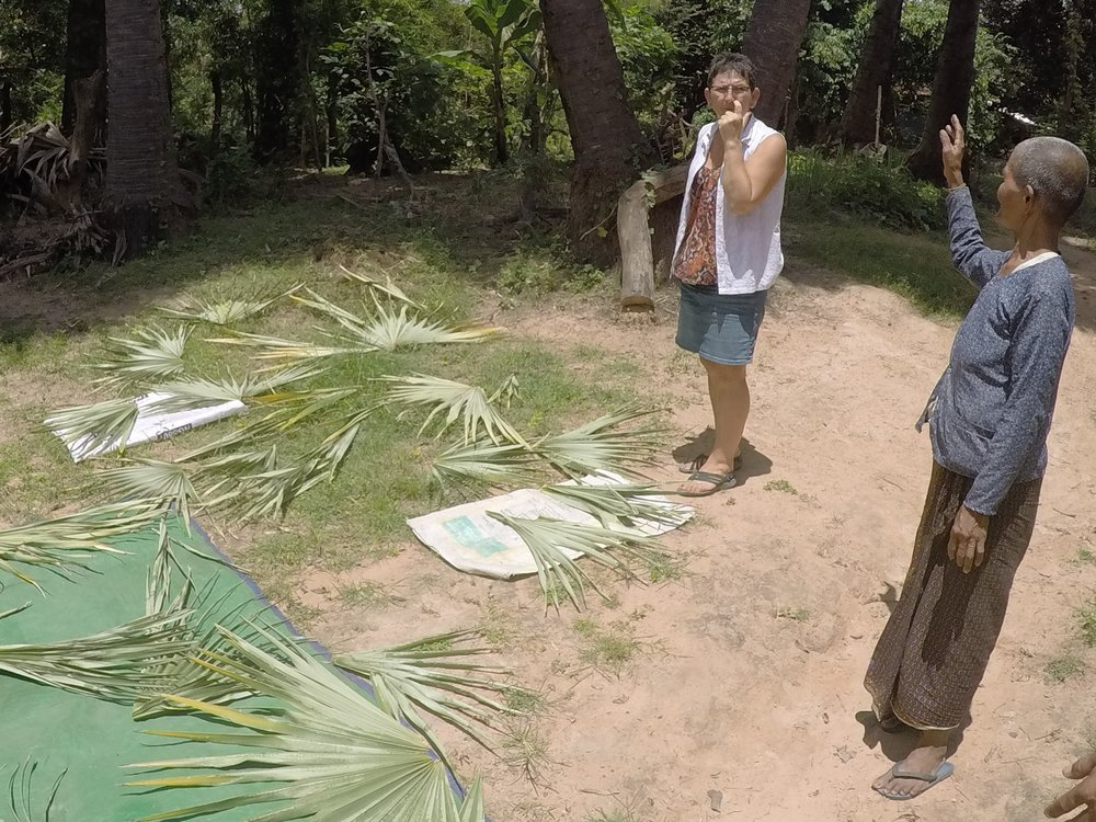Drying palm leaves in garden