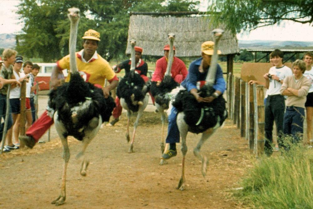 1984  Oudshoorn, South Africa