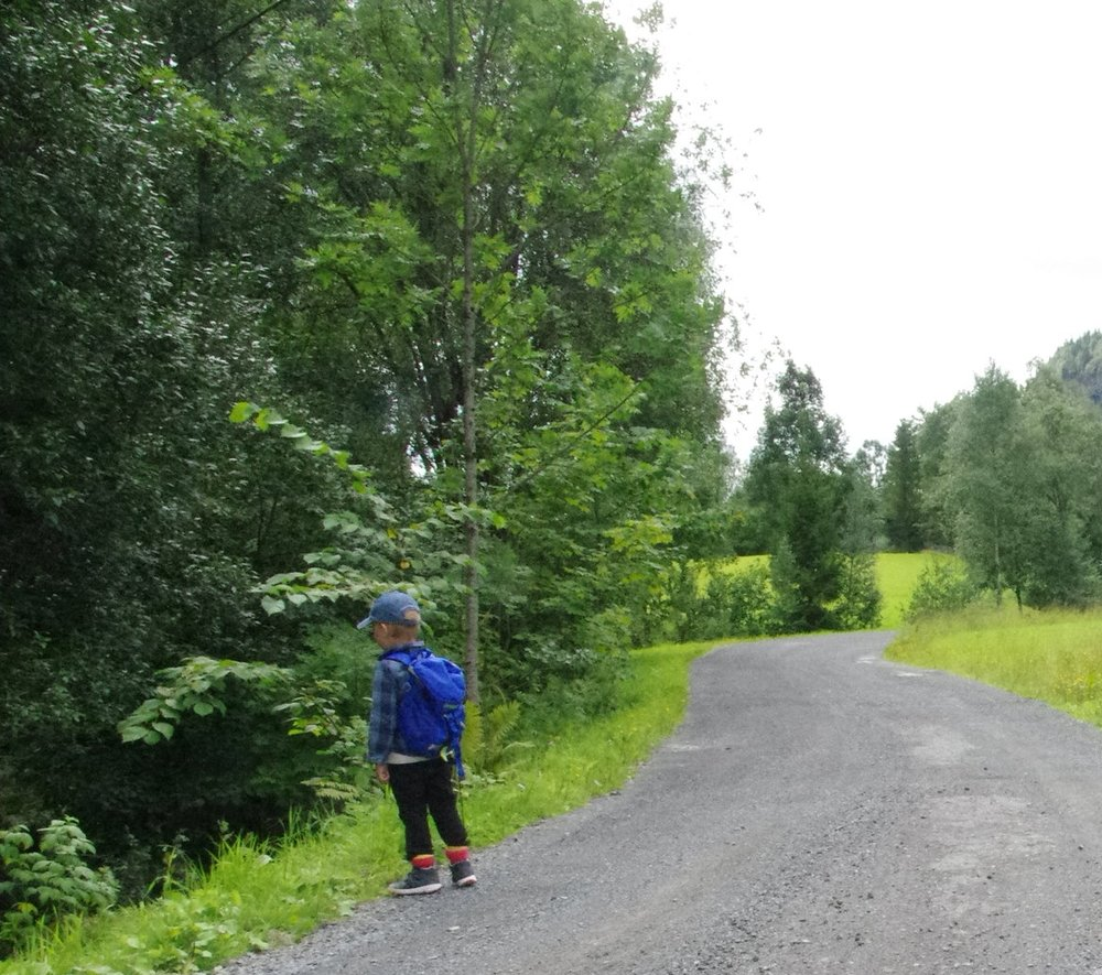 Første 1.4 km er på grusveien ettersom denne har bom.