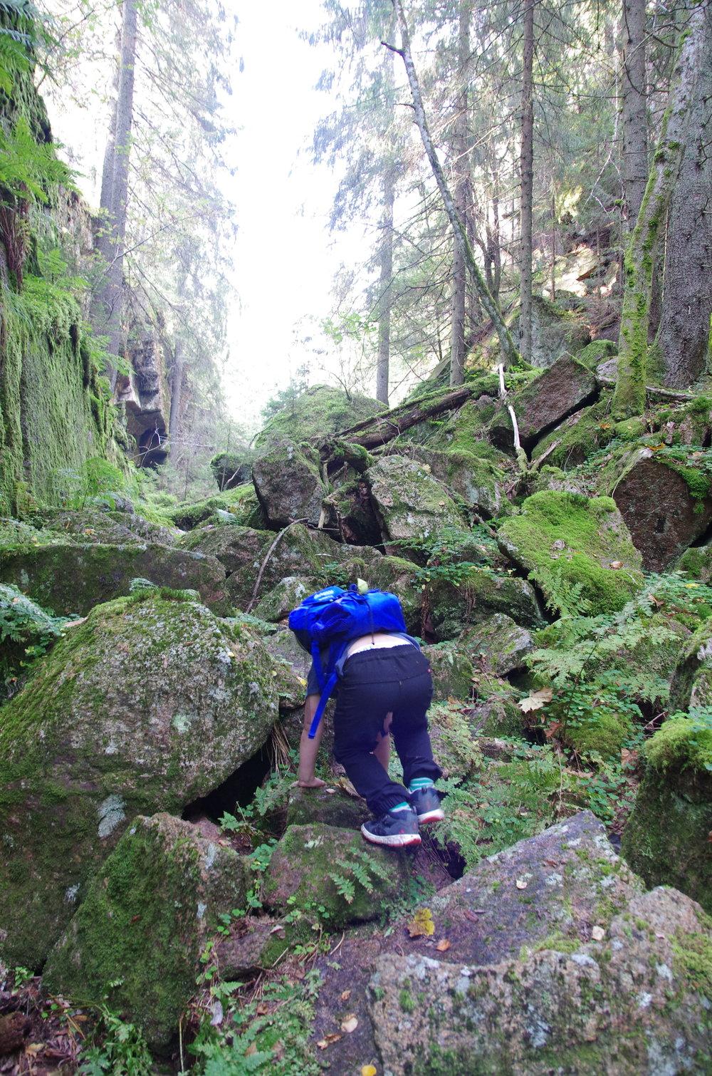 Passelig utfordrende for eldstemann i juvet inn til Svartvannet