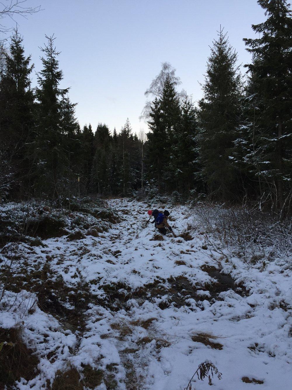 Første 100 meter på grusvei så ganske grov traktorvei. Vogn med store hjul funker fint.