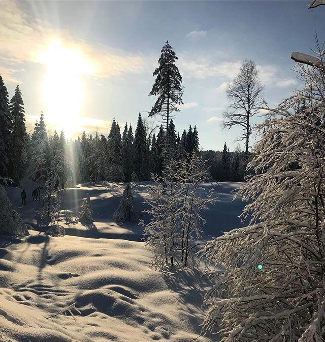 For en fantastisk vinter så langt ❄️🎉 denne ukens utfordring blir barna i sprengkulden. #magiskemarka #markaglede #ski #markafordeminste #utno #mittlekeland #eventyrskog #urskog #barnpåtur #skogstur #marka #medbarnpåtur #lavterskel #lavterskeltur  #utebarn #friluftslivmedbarn #friluftsliv #mittnorge #tur #markafordelittstørre #fjelltur