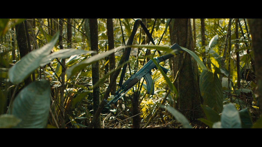 12 Gun in jungle.jpg