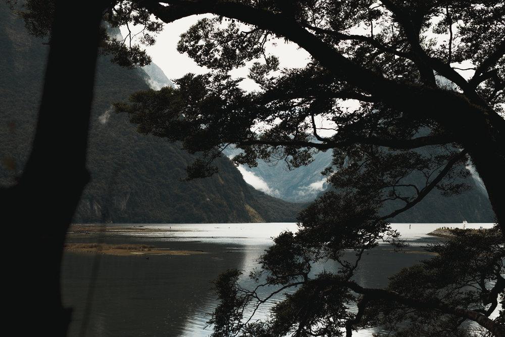 new-zealand-fjordland
