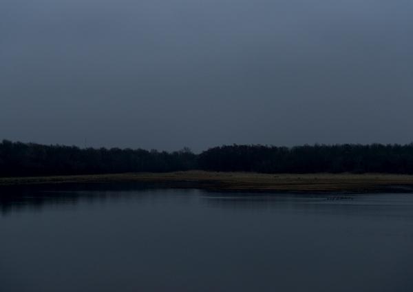 't Bokkegat, Geestgrond, 2013