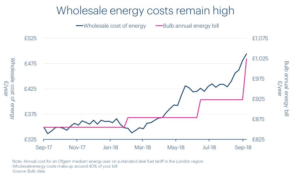 chart-showing-bulb-price-vs-wholesale-energy-costs