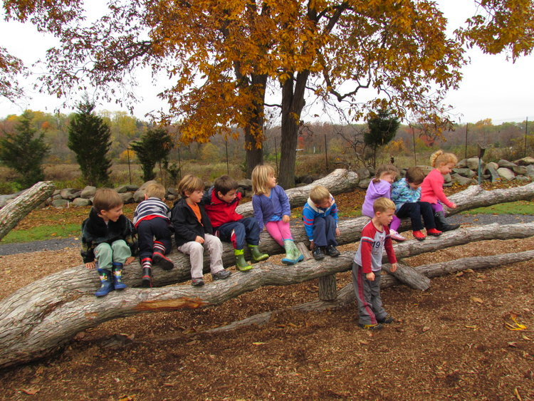 Grasshopper Grove Nature Play Party Available Only Mid April Through November