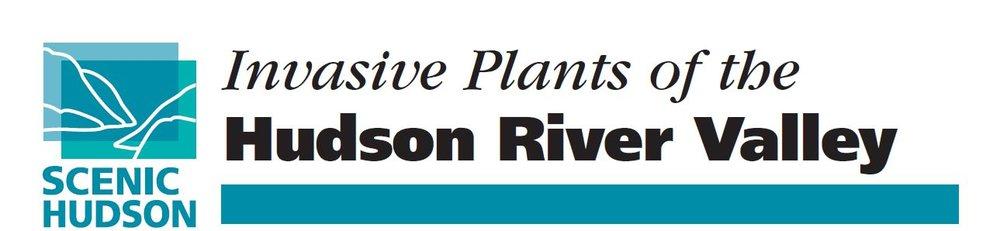 invasive plants banner.JPG