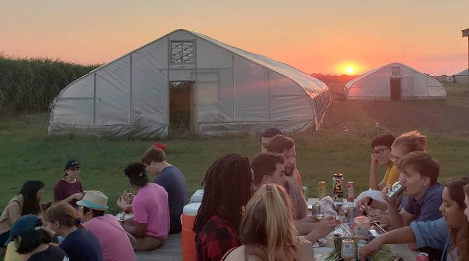 sunset thrusdays on the farm.png