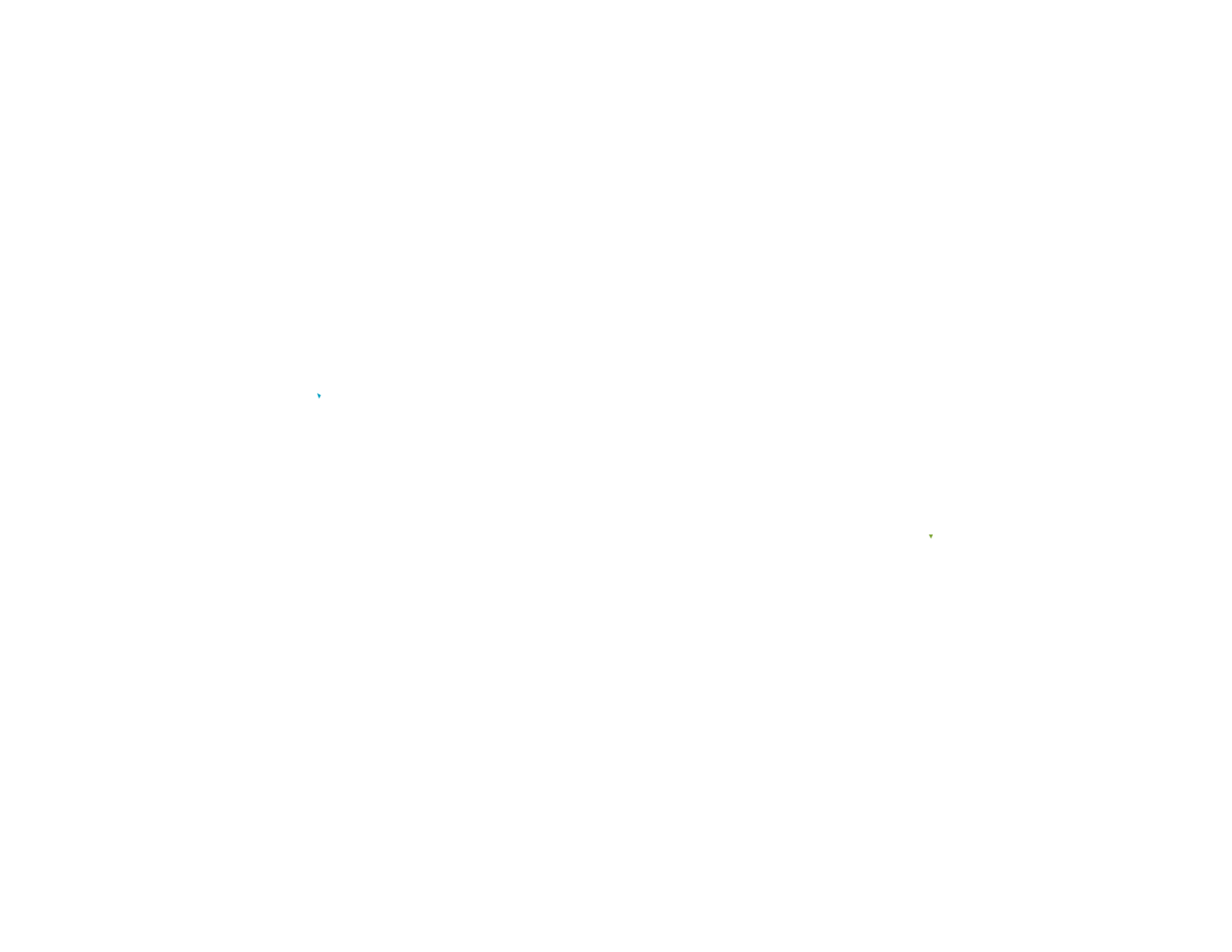 Tumaini International
