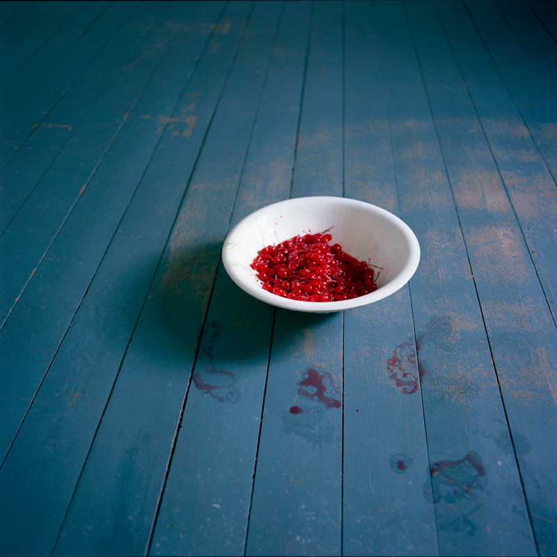 CIG HARVEY, Bowl of Cherries, Rockport, ME, 2007