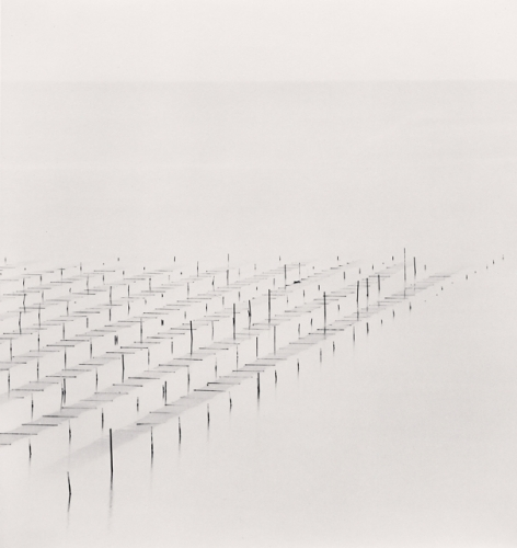 MICHAEL KENNA,  Floating Seaweed,  J eung-do, Shinan, South Korea , 2012