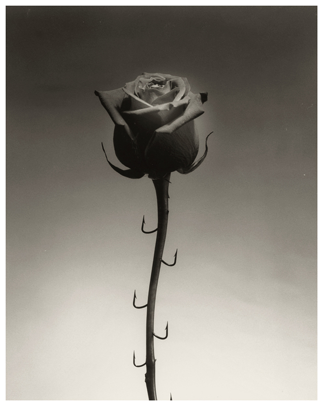 CHEMA MADOZ Untitled, Madrid, 1996
