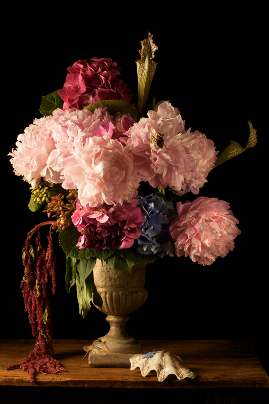 PAULETTE TAVORMINA Peonies (from the series Natura Morta), 2009