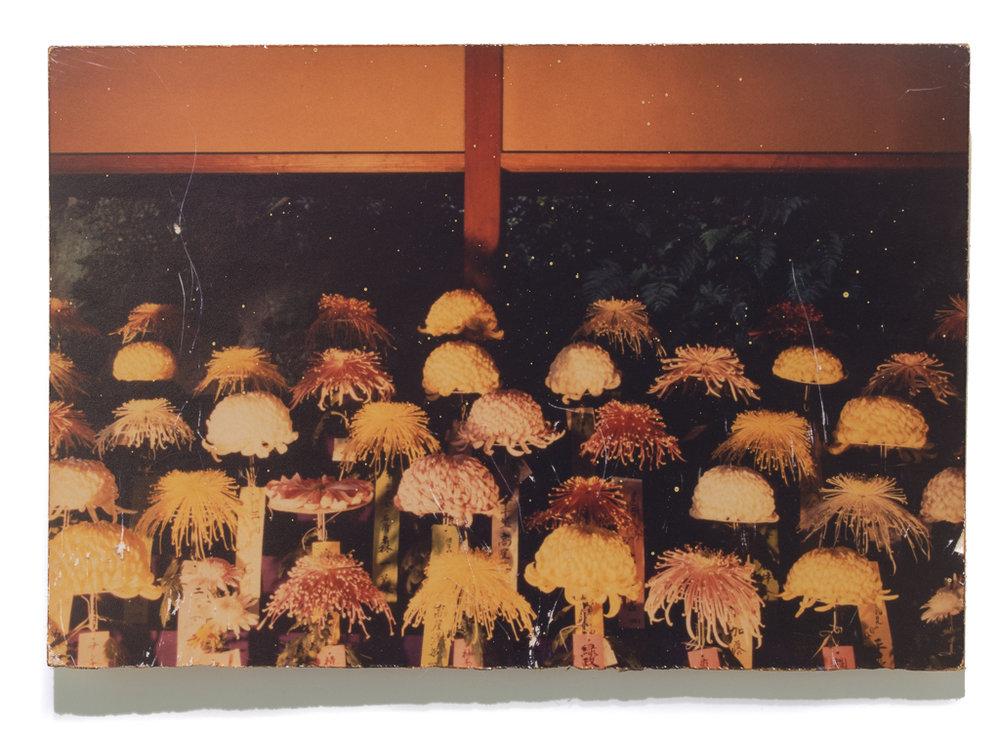 MASAO YAMAMOTO #137, (from the series A Box of Ku), 1992