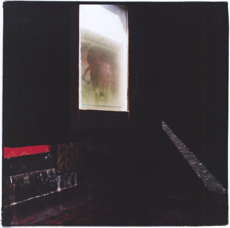 MEHRAN MOHAJER,  Camera Rosea 4 , 2007
