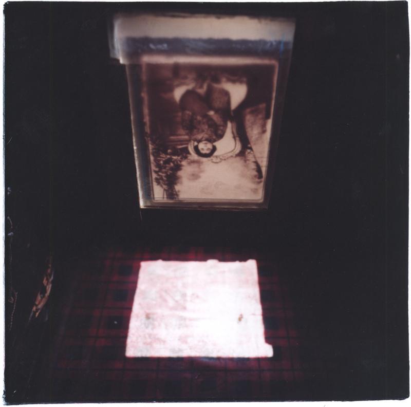 MEHRAN MOHAJER Camera Rosea 1, 2007