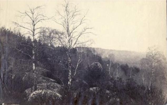 Cuvelier, Eugene