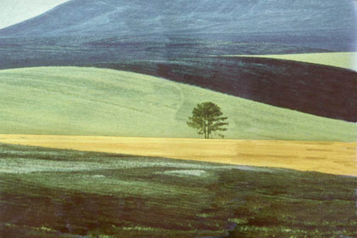 FRANCO FONTANA Landscape, Italy, 1978