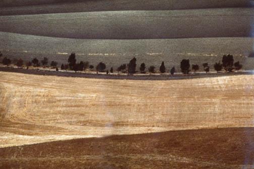 FRANCO FONTANA Landscape, 1978